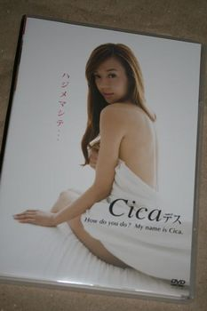 Cica_02.JPG